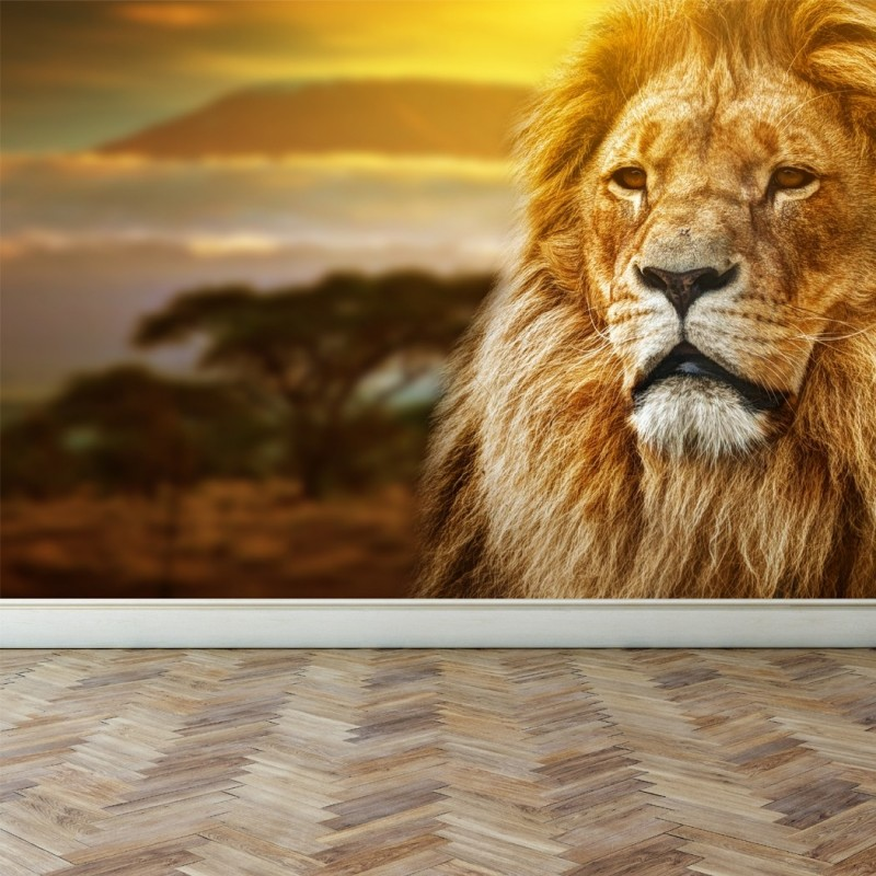 Wall Mural Lion on savanna, Peel and Stick Repositionable Fabric Wallpaper for Interior Home Decor