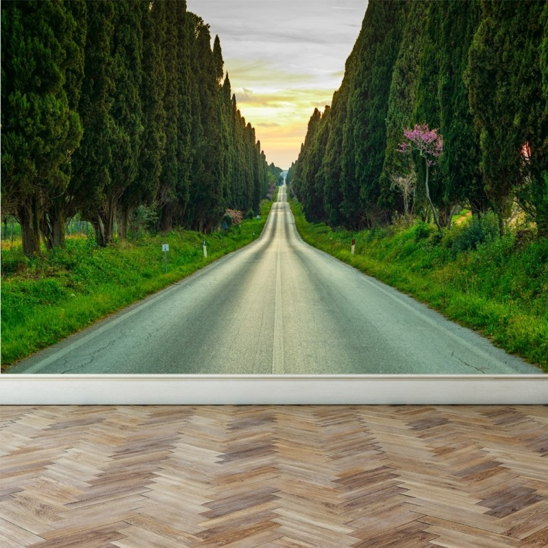 Wall Mural Evergreen cypress trees, Peel and Stick Repositionable Fabric Wallpaper for Interior Home Decor