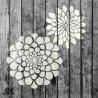 Zinnia Flower Small Stencils Set - Pack of 2 - Painting for Wood Wall Furniture Floor Tiles